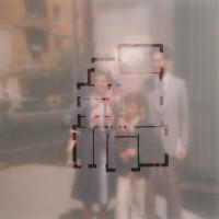 Homefocus - 2007, poliestere ritagliato su fotografia, cm. 60x60